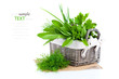 green herbs in braided basket isolated on white background