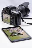 タブレットとカメラと写真