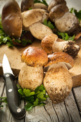 Mushrooms - Porcini