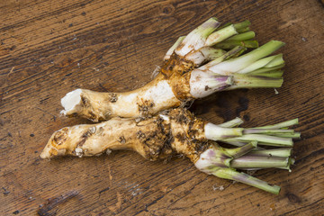 horseradish herb on a table