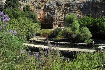 The spring of Banias with the Cave of Pan in background