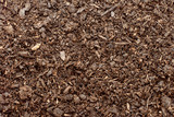 Compost, soil or dirt background