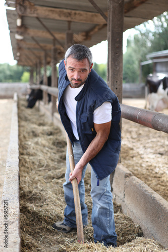 farmer spreding, straw