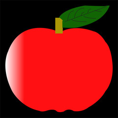 Apple Fruit Illustrate
