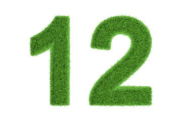 Number 12 with a green grass texture