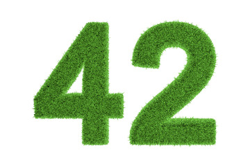 Number 42 with a green grass texture