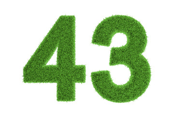 Number 43 with a green grass texture