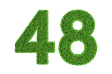 Number 48 with a green grass texture