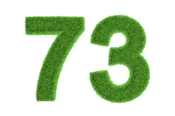 Number 73 with a green grass texture
