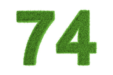 Number 74 with a green grass texture