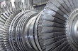Rotor of a steam turbine