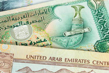 United Arub Emirates banknote close-up