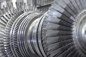 Rotor of a steam turbine