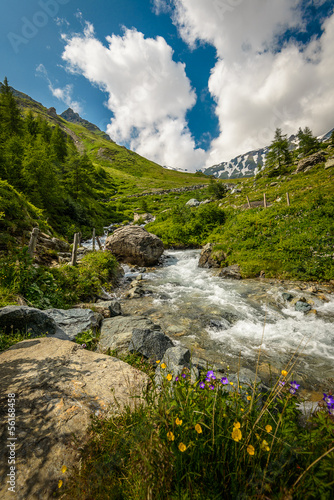 Summer landscape with river in mountain valley .