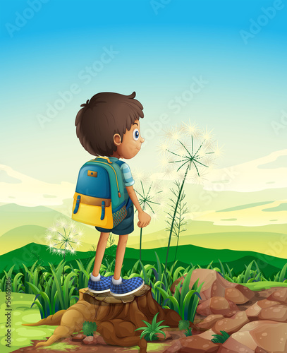A boy with a backpack standing above a stump
