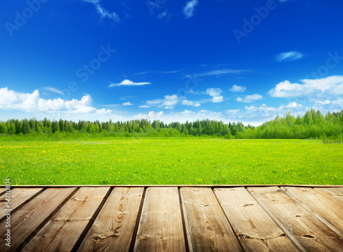 spring field and wood floor