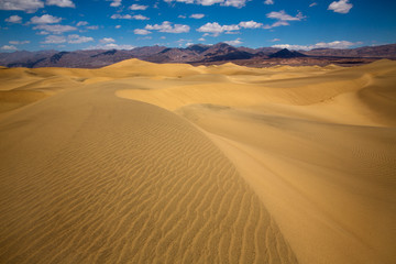 Mesquite Dunes desert in Death Valley National Park