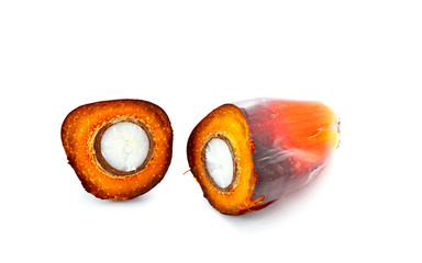 cut oil palm fruit on white background