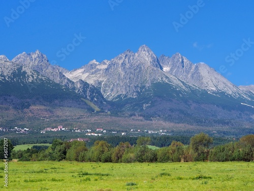 Peaks of High Tatras and meadow