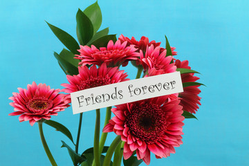 Friends forever card with pink gerbera daisies