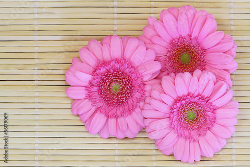 Pink gerbera daisies on bamboo mat with copy space