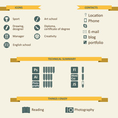 Infographic and icons for resume