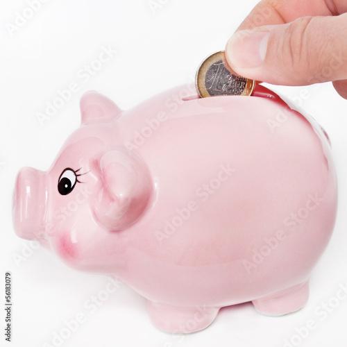 Sparschwein und Euro