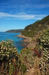 Beautiful landscape on Great Ocean Road, Australia.
