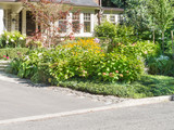 Herbaceous Border in front of home