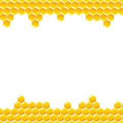 Honeycomb vector on white background