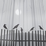 Halloween background with ravens on fence