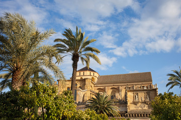 Courtyard Garden and Mezquita Cathedral of Cordoba