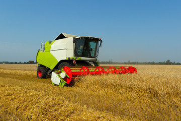 a combine harvester in a golden wheat field