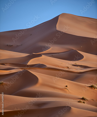 Fototapeten,wildnis,sahara,morocco,reise