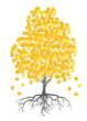 Autumn birch tree leaves vector background