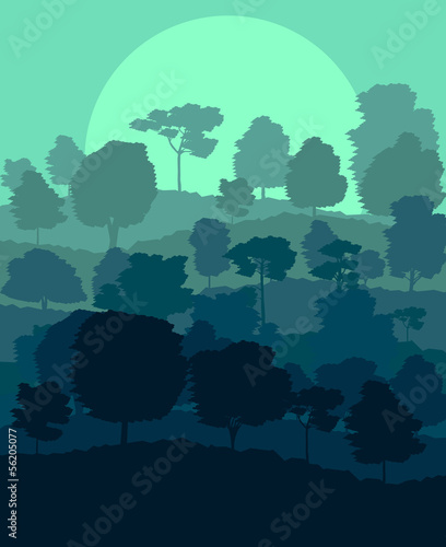 Mystical forest vector background landscape concept