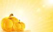 Pumpkins and shine