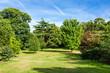 Lush Green Beautiful Woodland Park Garden