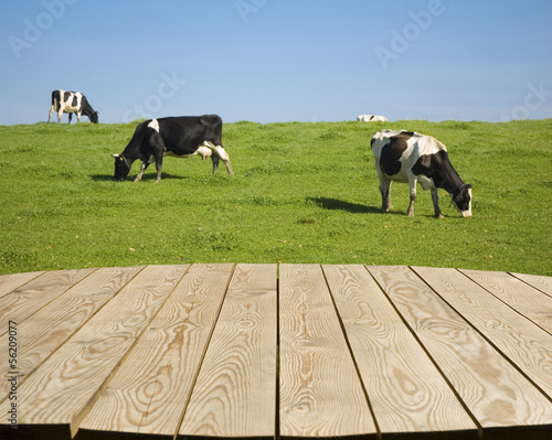 Empty wooden table on the farm