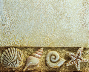 Sea Shells on Brown Background with  Copyspace