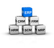 ERP System illustration