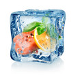Fillet of salmon in ice cube