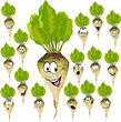 sugar beet cartoon with many expressions