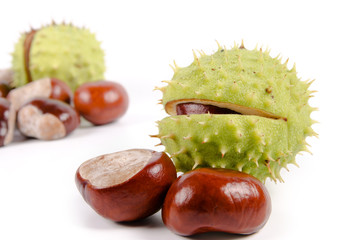Fresh sweet chestnuts