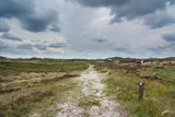 heathland landscape during a stormy day