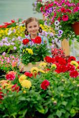Garden center, girl holding flowers in garden center