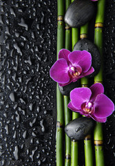Spa setting with  orchid and bamboo grove ,zen stone