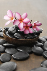 Still life with bowl of frangipani and stones on board
