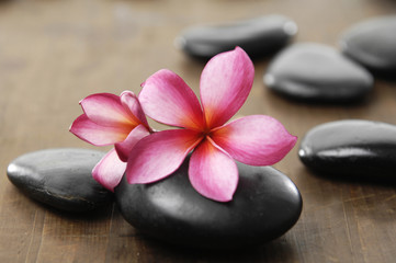 stones with two frangipani flower on wooden board