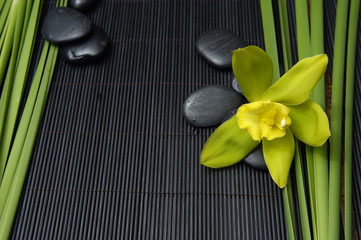 green orchid and green plant with stones on mat
